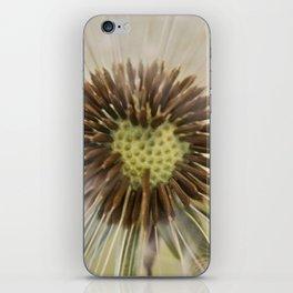 Dandelion (2) iPhone Skin