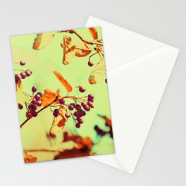Autumn Berry Crossings @ Die Farbenfluesterin Stationery Cards