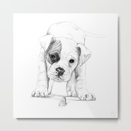 Patch, A Boxer Puppy :: Shelter Dog Project Metal Print