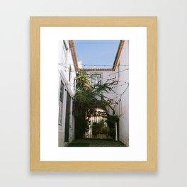 climbing ivy Framed Art Print