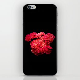 Think Flowers - Red Yarrow iPhone Skin