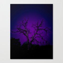 Biloxi tree blue Canvas Print