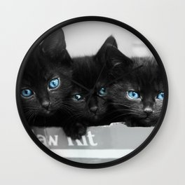 Blue Eyed Kittens Wall Clock