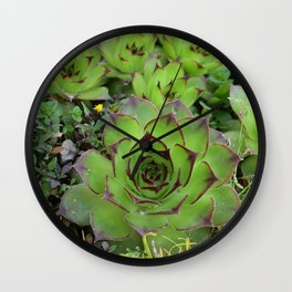 Flowers Cactus Wall Clock