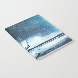 A Winter Dream Notebook