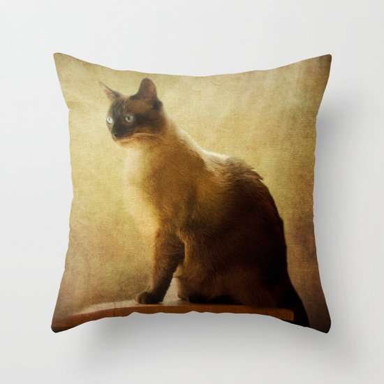 Stoney Throw Pillow