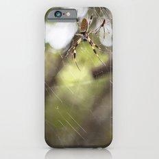 Walking in a spiderweb iPhone 6s Slim Case