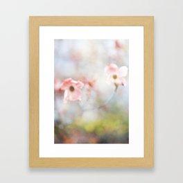 Dogwood Tree 1 Framed Art Print