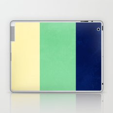 South Pacific Colorblock Stripes Laptop & iPad Skin
