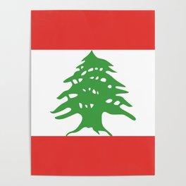 Lebanon flag emblem Poster