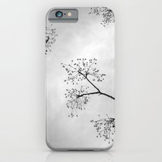 Zen Trees.... BW iPhone 6s Slim Case