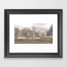 Foggy Grazing Framed Art Print