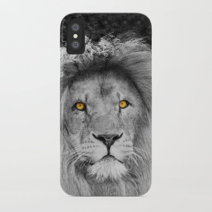 LION BEAUTY iPhone Case