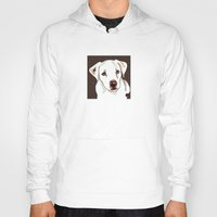 golden retriever Hoodies featuring Golden retriever by Pendientera