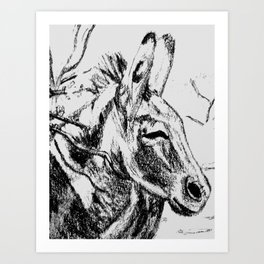 Oatman Burro II Art Print