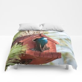Blue Swallow Photography Print Comforters