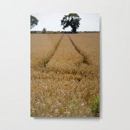 Tramlines in a wheat field Metal Print