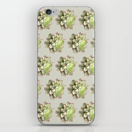 Echeveria iPhone Skin
