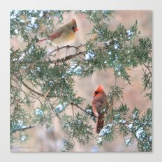 Winter Pair  #2 Cardinals Canvas Print