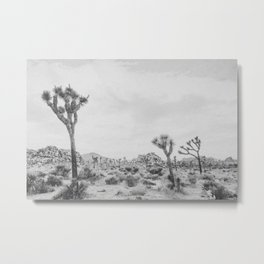 JOSHUA TREE XVII / California Metal Print
