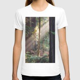 Hiding From The Dark T-shirt