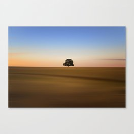 Focus on one thing at a time isolated oak tree Canvas Print