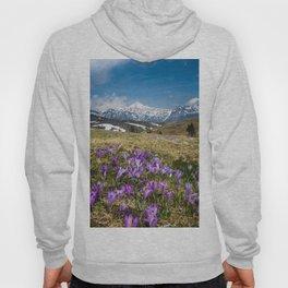 Mountains and crocus flowers on Velika Planina, Slovenia Hoody