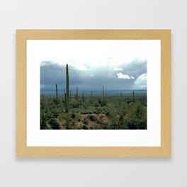 Arizona Desert and Cactuses Framed Art Print