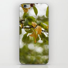 When you look up iPhone Skin