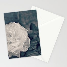 Flowers in Black Stationery Cards