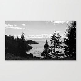 Sooke view Canvas Print