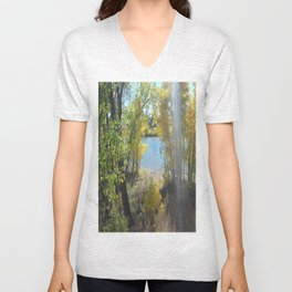 Sparkle Lake Unisex V-Neck