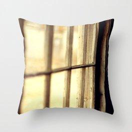 The Lighter side Throw Pillow