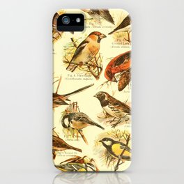 William Playne Pycraft - A Book of Birds (1908) - Plate 26: Some Perching- or Song-birds iPhone Case