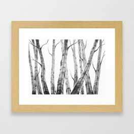 Birch Tree | Watercolour | Painting | black-and-white | Black and White | Minimalism Framed Art Print