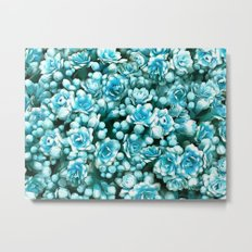 Blue succulents Metal Print