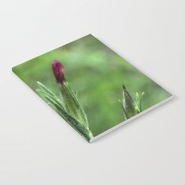 Pink Lipstick Flower Buds Notebook