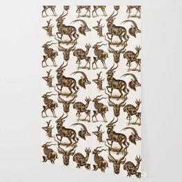Ernst Haeckel Antilopina Antelope Wallpaper