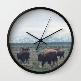Roaming Buffalo Wall Clock