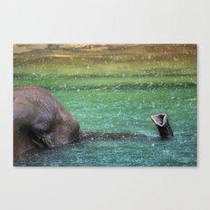 snorkeling Canvas Print