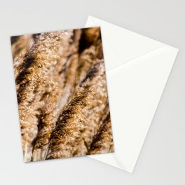 Brown Reeds Stationery Cards