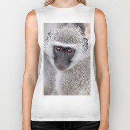 Little vervet monkey, Africa wildlife Biker Tank