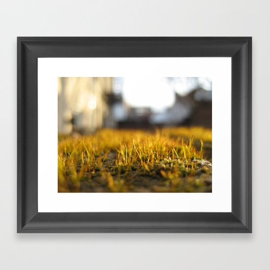 Brooklyn Moss Framed Art Print