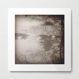 Seeing Schizophrenia: Image 3 Metal Print