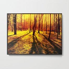 Overexposure Metal Print