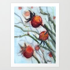 Rose Hips Abstract Watercolor Nature Art Print