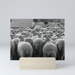 Sheep Mini Art Print