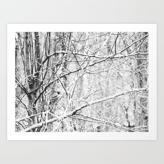 Longing for Spring Art Print
