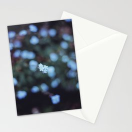 Backyard Flowers (2) Stationery Cards