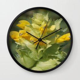 Yellow Wild Flower Rhinanthus Serotinus Wall Clock